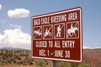 Bald Eagle Closure Sign